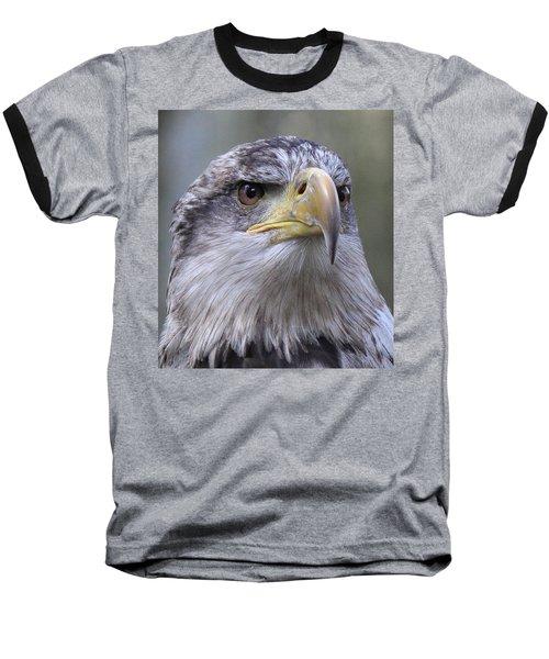 Bald Eagle - Juvenile Baseball T-Shirt