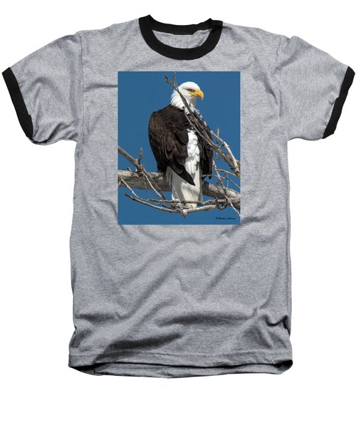 Bald Eagle Putting On The Ritz Baseball T-Shirt by Stephen  Johnson