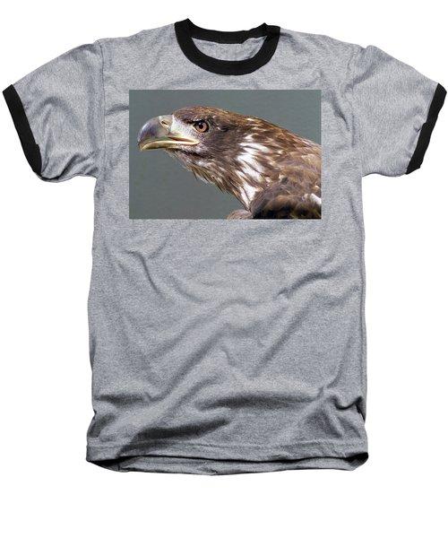 Bald Eagle Baseball T-Shirt by Steve Archbold