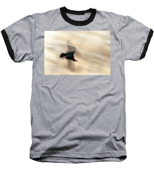 Bald Ibis Baseball T-Shirt
