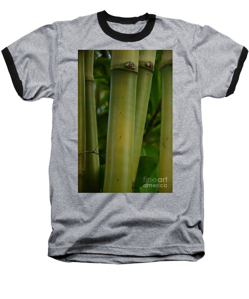 Baseball T-Shirt featuring the photograph Bamboo II by Robert Meanor