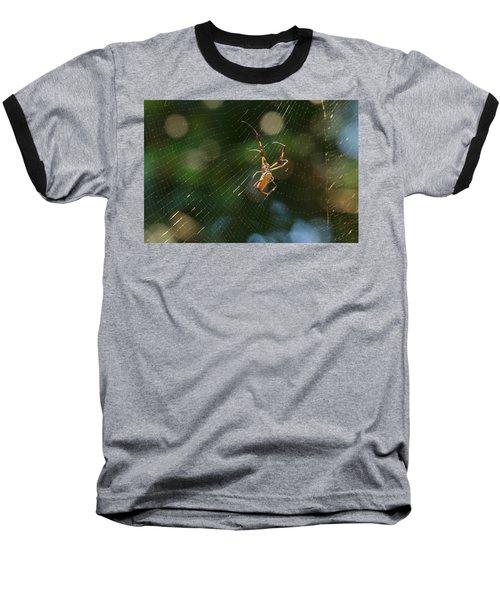 Banana Spider In Web Baseball T-Shirt