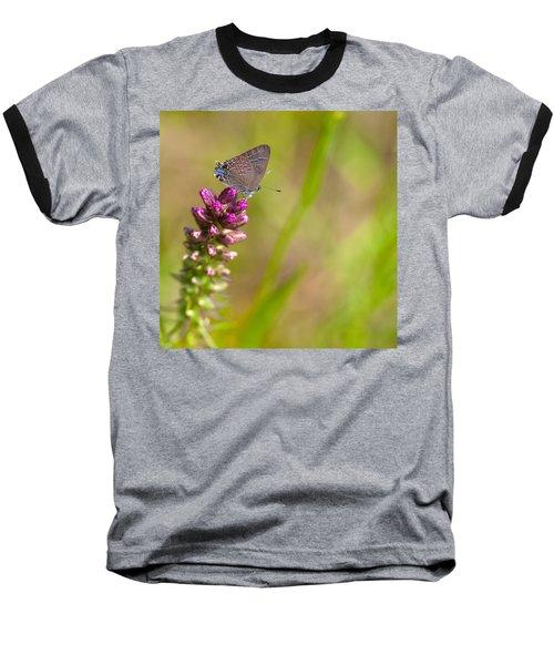 Banded Hairstreak Butterfly Baseball T-Shirt by Melinda Fawver