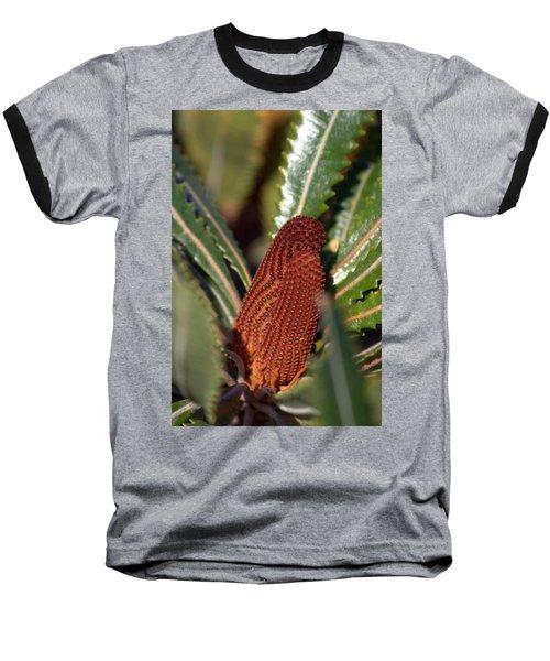 Baseball T-Shirt featuring the photograph Banksia by Miroslava Jurcik