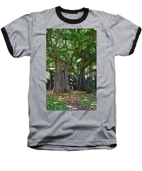 Banyan Tree At Honolulu Zoo Baseball T-Shirt