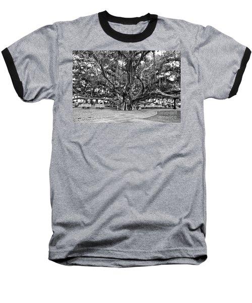 Banyan Tree Baseball T-Shirt by Scott Pellegrin