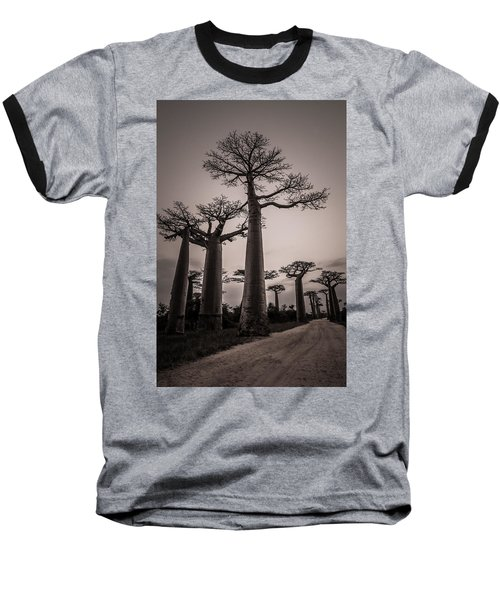 Baobab Avenue Baseball T-Shirt