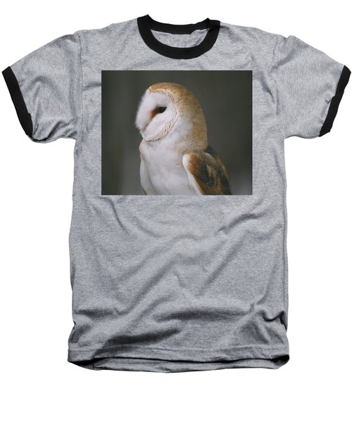 Barn Owl Baseball T-Shirt