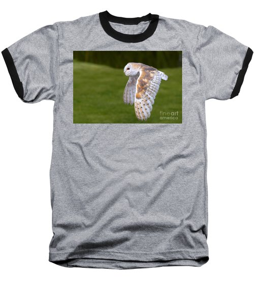 Barn Owl In Flight Baseball T-Shirt by Nick  Biemans