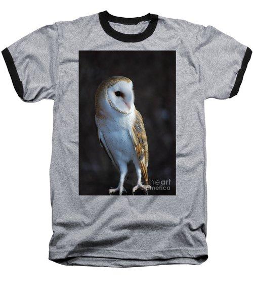 Barn Owl Baseball T-Shirt by Sharon Elliott
