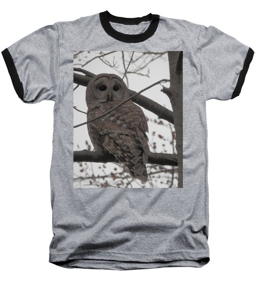 Baseball T-Shirt featuring the photograph Barred Owl Perched by Emmy Marie Vickers