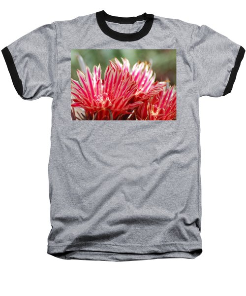 Barrel Cactus Flower Baseball T-Shirt