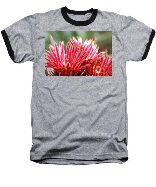 Barrel Cactus Flower Baseball T-Shirt