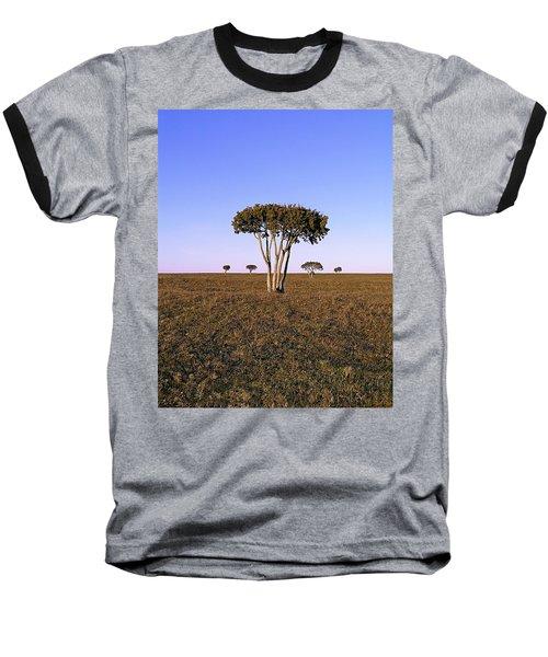 Barren Tree Baseball T-Shirt