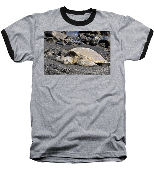 Baseball T-Shirt featuring the photograph Basking In The Sun by David Lawson
