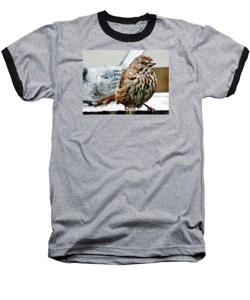 Baseball T-Shirt featuring the photograph Bathe Then Fluff by VLee Watson