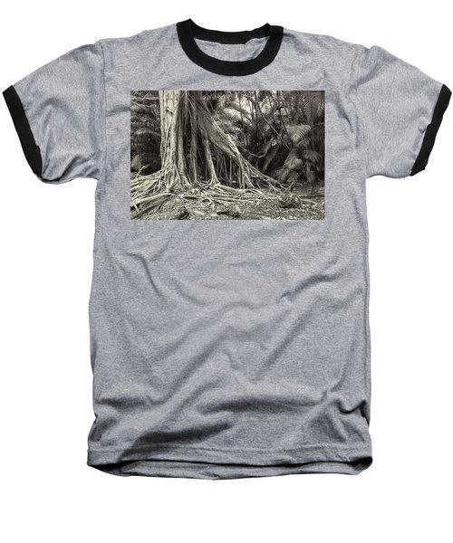 Strangler Fig Baseball T-Shirt