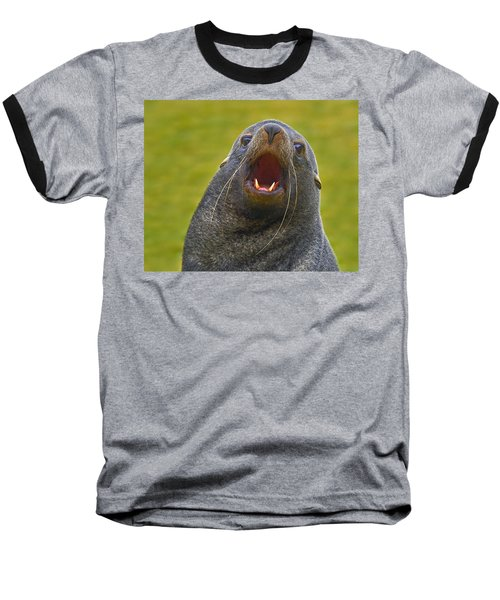 Beach Master Baseball T-Shirt