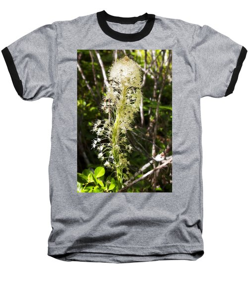 Bear Grass No 3 Baseball T-Shirt
