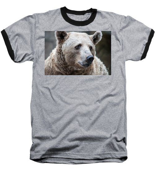 Bear Necessities Baseball T-Shirt