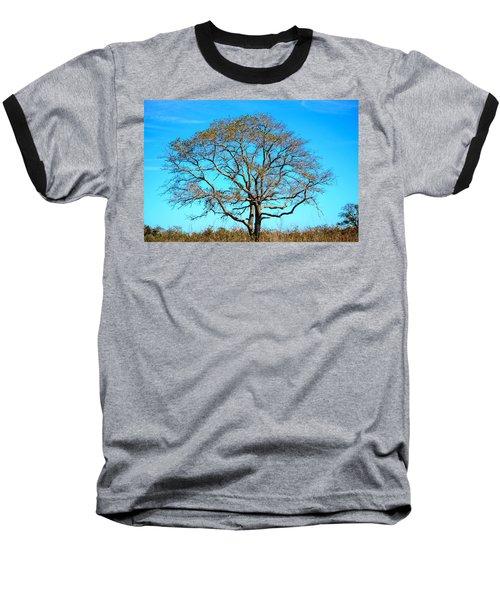 Baseball T-Shirt featuring the photograph Beautiful Branching by Debra Martz