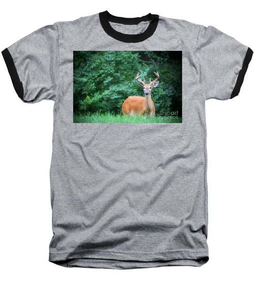 Beautiful Buck  Baseball T-Shirt