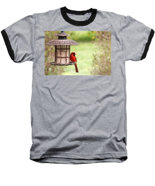 Baseball T-Shirt featuring the photograph Beautiful Cardinal by Trina  Ansel