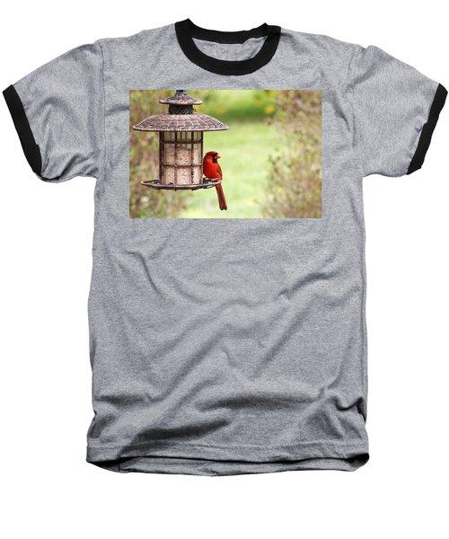 Beautiful Cardinal Baseball T-Shirt
