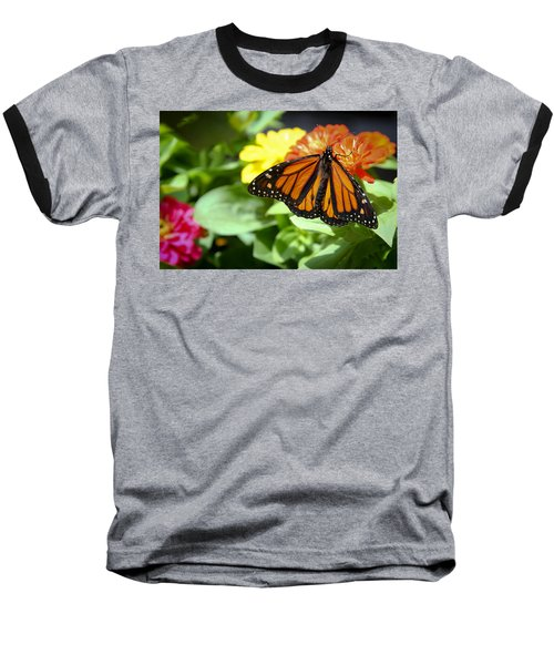 Baseball T-Shirt featuring the photograph Beautiful Monarch Butterfly by Patrice Zinck