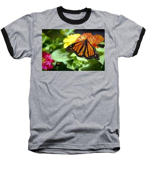 Beautiful Monarch Butterfly Baseball T-Shirt by Patrice Zinck