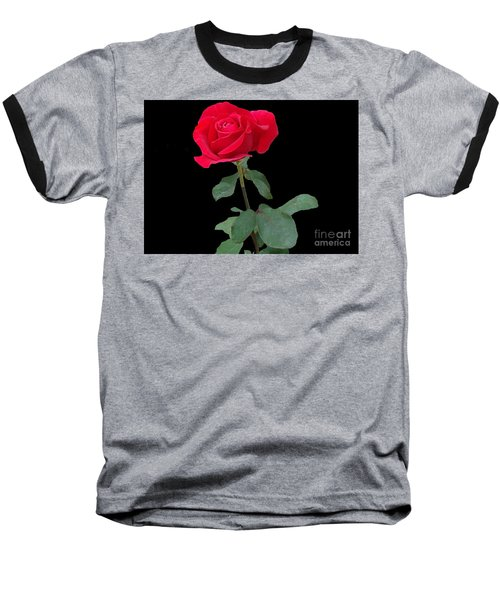 Beautiful Red Rose Baseball T-Shirt