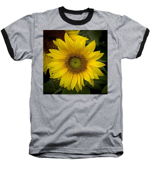 Beautiful Sunflower Baseball T-Shirt