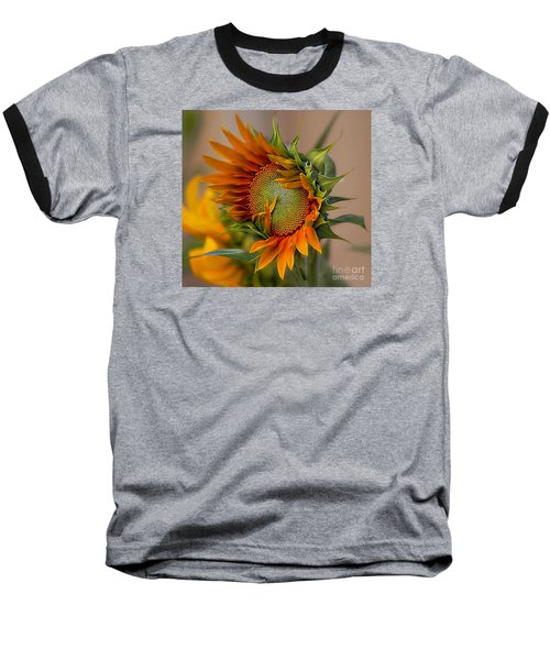 Beautiful Sunflower Baseball T-Shirt by John  Kolenberg