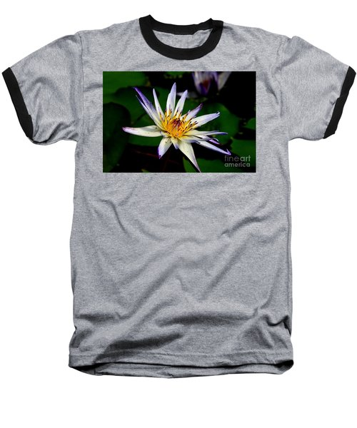 Beautiful Violet White And Yellow Water Lily Flower Baseball T-Shirt