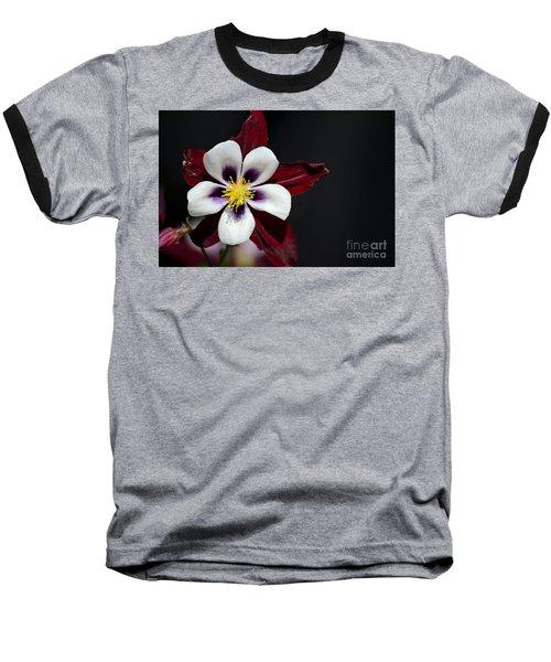 Beautiful White Petal Yellow Stamen Purple Shades Aquilegia Columbine Flower Baseball T-Shirt