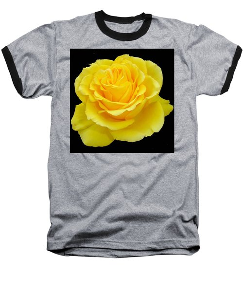 Beautiful Yellow Rose Flower On Black Background  Baseball T-Shirt