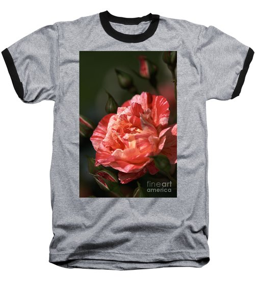 Baseball T-Shirt featuring the photograph Beauty Of Rose by Joy Watson