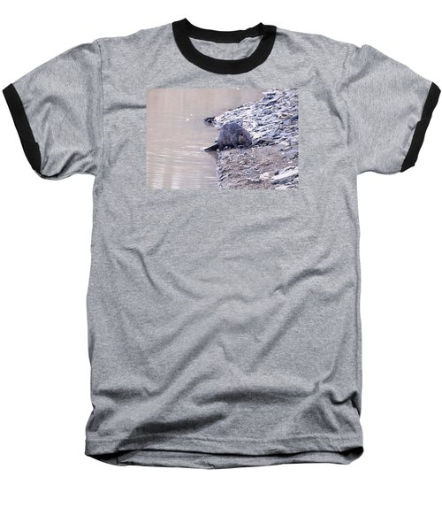 Beaver On Dry Land Baseball T-Shirt by Chris Flees