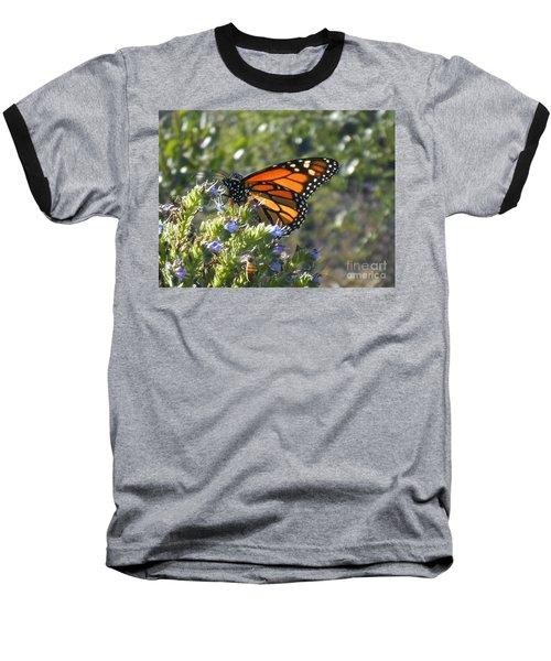 Bee And Monarch  Baseball T-Shirt