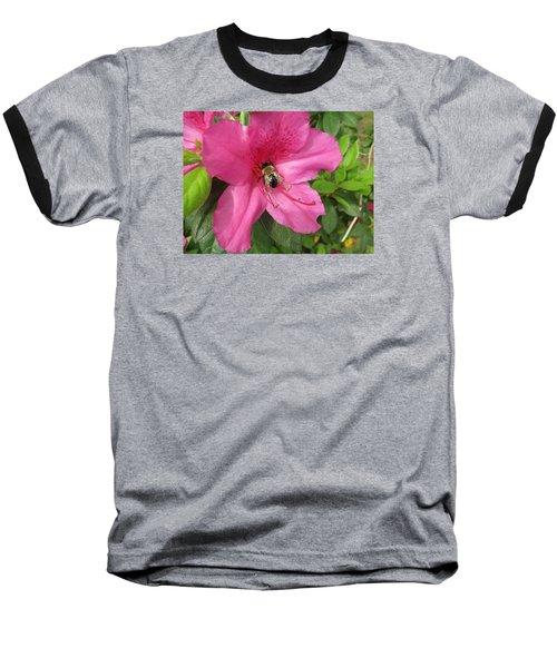 Bee Cause Baseball T-Shirt