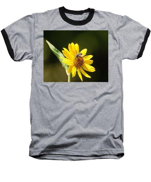 Bee Flower Baseball T-Shirt