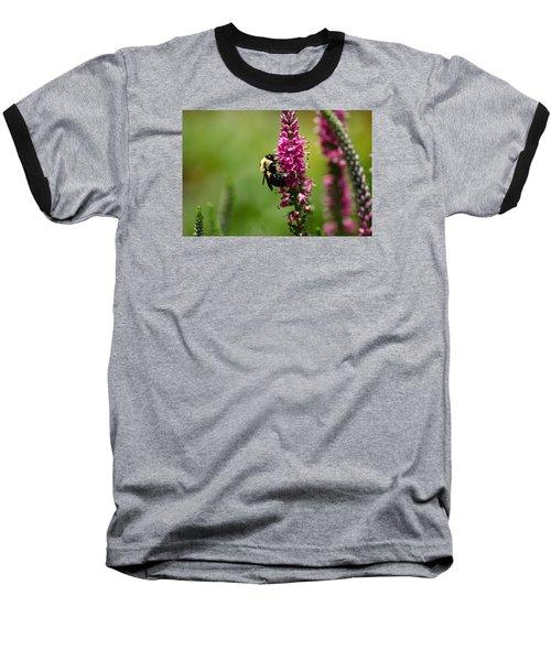 Bee Heaven Baseball T-Shirt