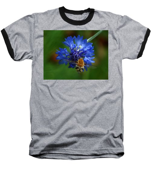Baseball T-Shirt featuring the photograph Bee by Leticia Latocki