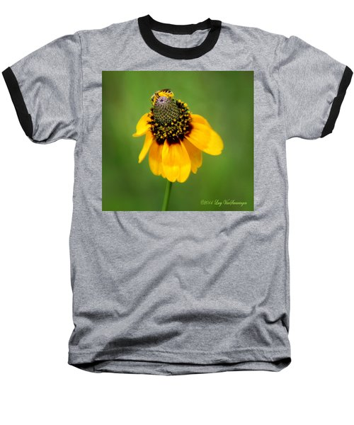 Bee My Coneflower Baseball T-Shirt
