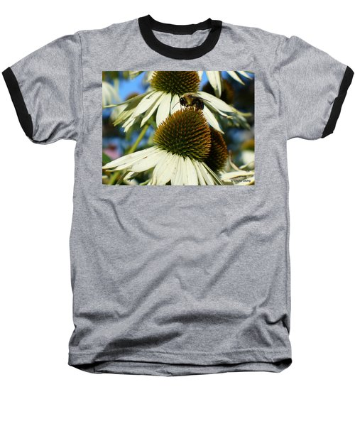 Baseball T-Shirt featuring the photograph Bee On A Cone Flower by Lingfai Leung