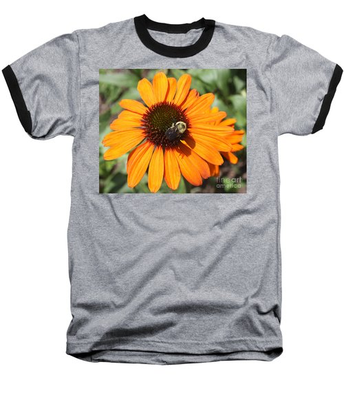 Baseball T-Shirt featuring the photograph Bee On Flower by John Telfer