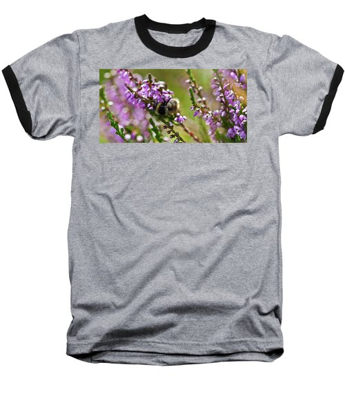Bee On Heather Baseball T-Shirt