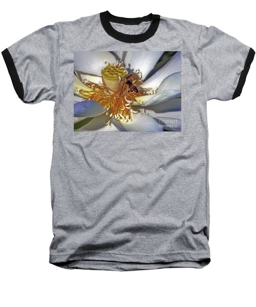 Bee On Lotus Baseball T-Shirt by Savannah Gibbs