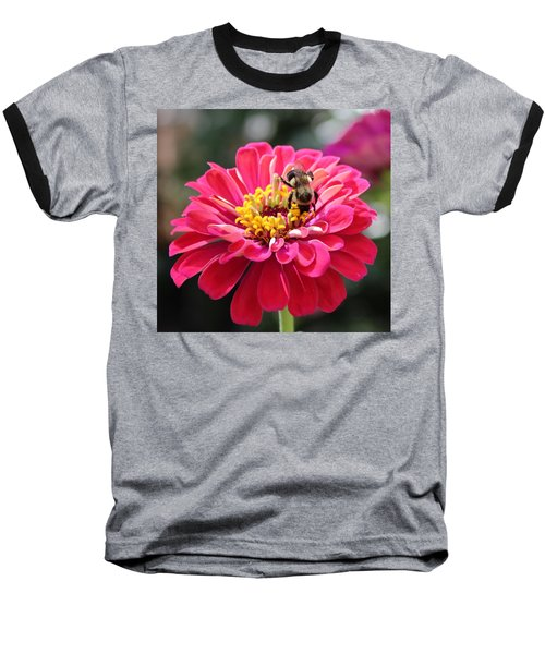 Baseball T-Shirt featuring the photograph Bee On Pink Flower by Cynthia Guinn