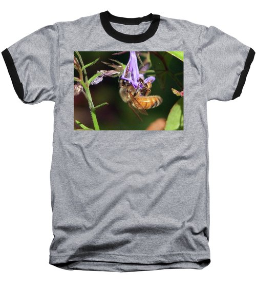 Bee With Flower Baseball T-Shirt
